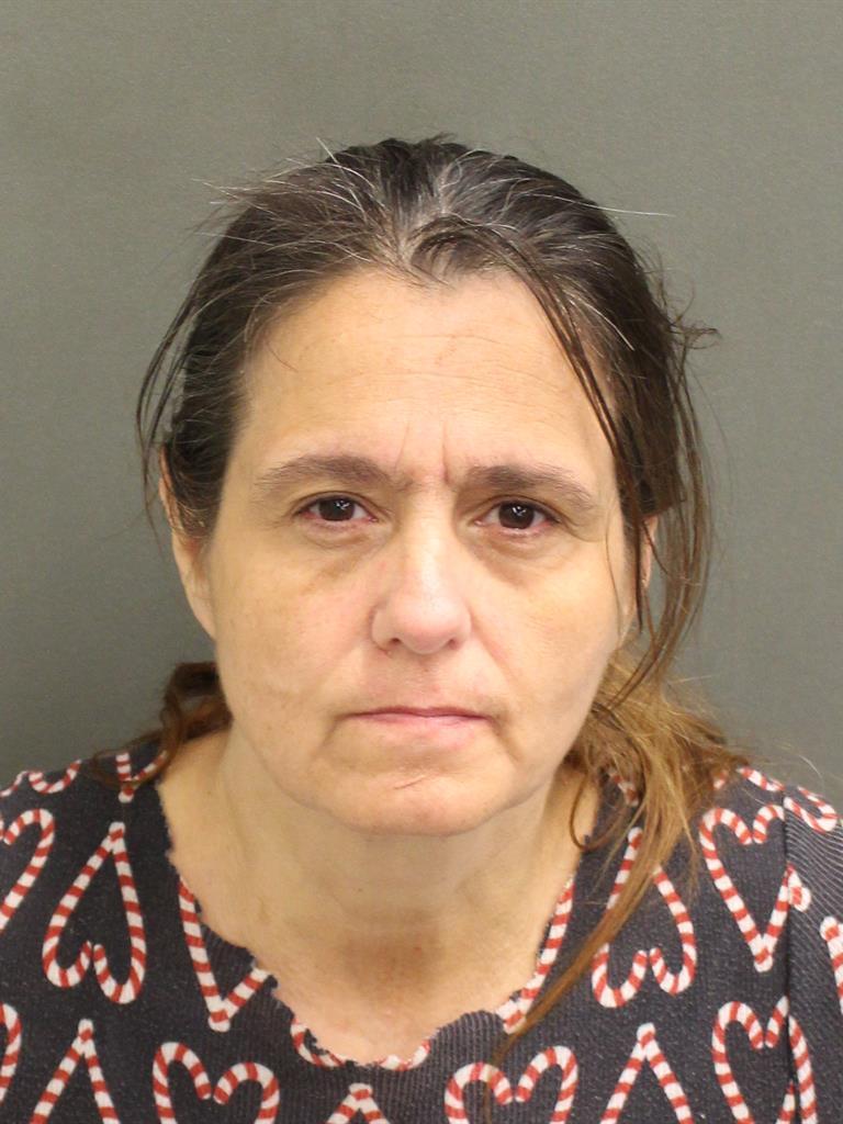 SHARON ANN HAYNES Mugshot / County Arrests / Orange County Arrests