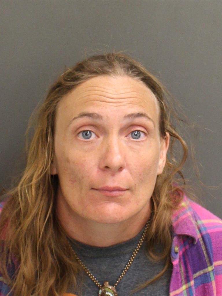 ERICA JEAN HORNSBY Mugshot / County Arrests / Orange County Arrests