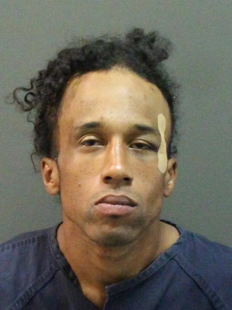 LEE A JR SPANN Mugshot / County Arrests / Orange County Arrests