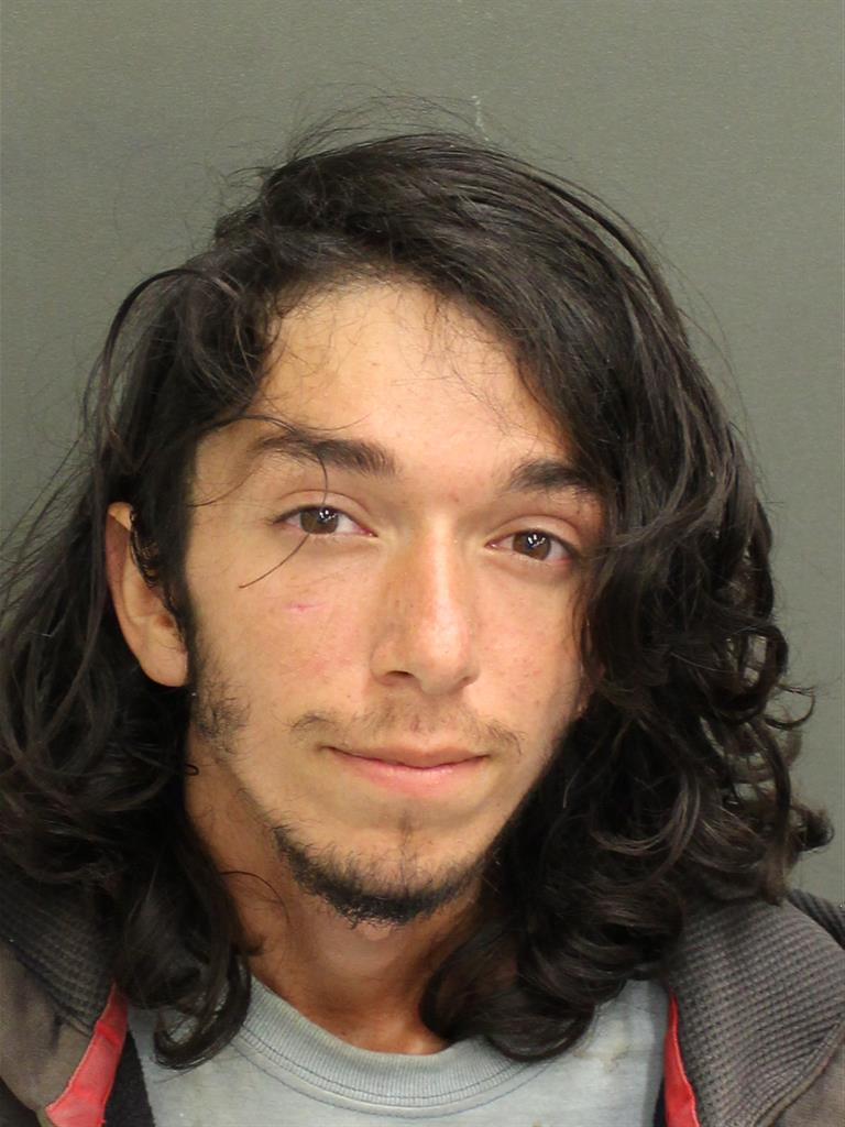 AUSTIN TAYLOR JOHNSON Mugshot / County Arrests / Orange County Arrests