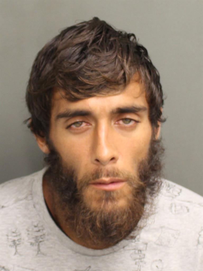 RYAN MICHAEL THOMAS Mugshot / County Arrests / Orange County Arrests