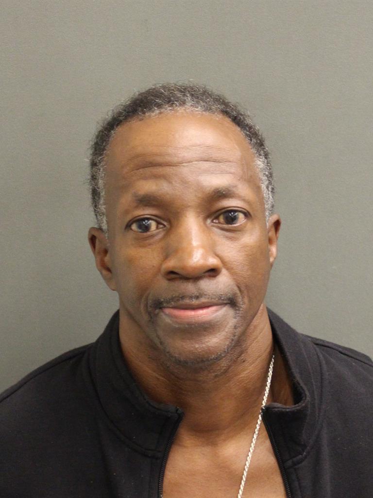 SHANNON LOWENZA JAMES Mugshot / County Arrests / Orange County Arrests