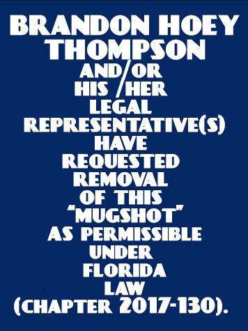 BRANDON HOEY THOMPSON Mugshot / County Arrests / Orange County Arrests