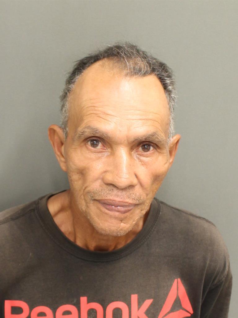 GERMAN LANGEFERRER Mugshot / County Arrests / Orange County Arrests