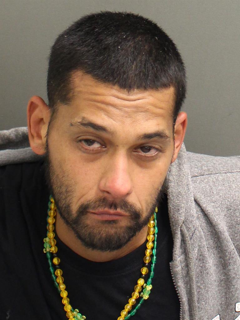 BRANDON REYESLABRADOR Mugshot / County Arrests / Orange County Arrests