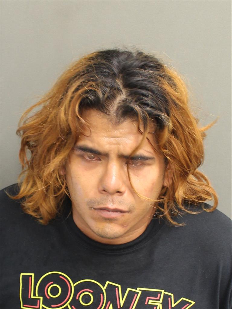 RAMJELLYS ALEGRE Mugshot / County Arrests / Orange County Arrests
