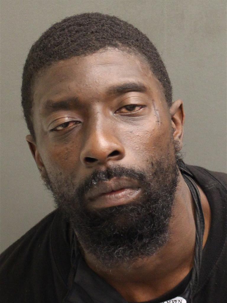 LAVON G HAYNES Mugshot / County Arrests / Orange County Arrests