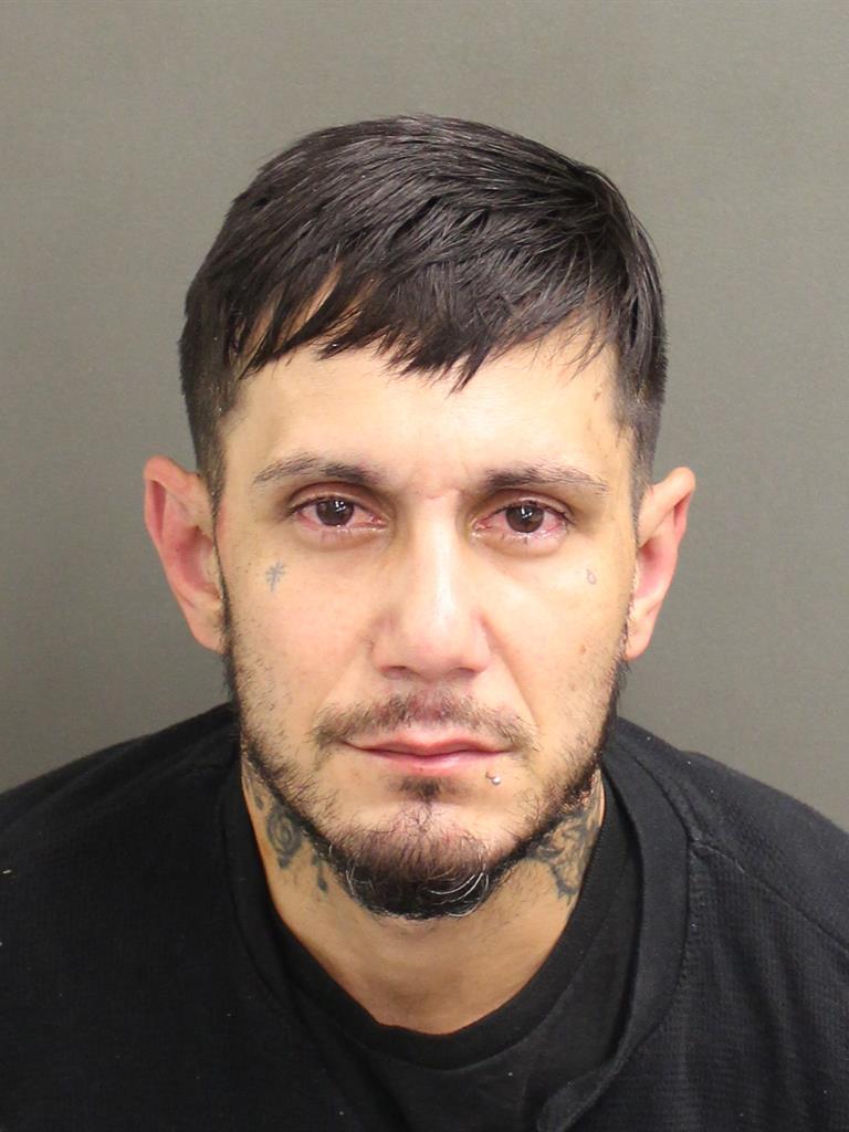 DYLAN DONALD RICCI Mugshot / County Arrests / Orange County Arrests